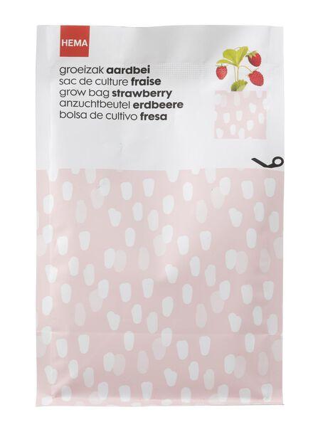 Erdbeer-Anzuchtset - 41820061 - HEMA