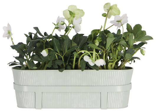 bac à fleurs 13x39x13.5 avec crochets pour balcon - vert - 41810261 - HEMA