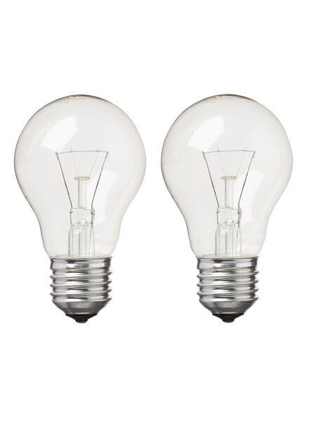 2 ampoules 40W - gros culot - 20000132 - HEMA