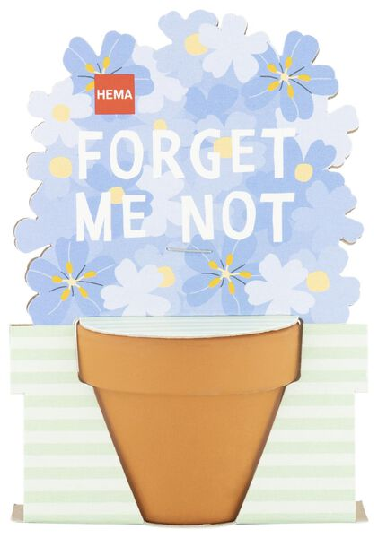 forget-me-not seeds with small jar Ø 5 cm - 41810095 - hema