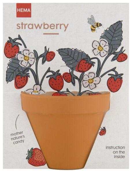 Erdbeeren im Topf, Ø 9 cm - 41810267 - HEMA