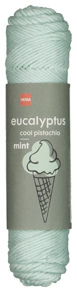 fil eucalyptus 83m vert menthe - 1400208 - HEMA