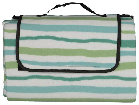 picnic blanket fleece 170x135 white/green - 41810164 - hema