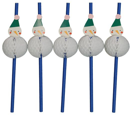 Image of HEMA 10 Paper Straws 20 Cm - Snowman