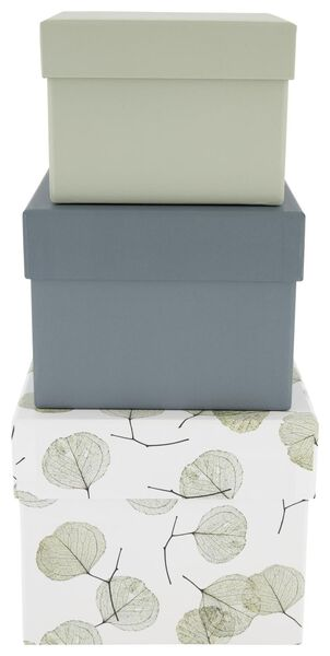 3 storage boxes - cardboard - leaf - 39890051 - hema