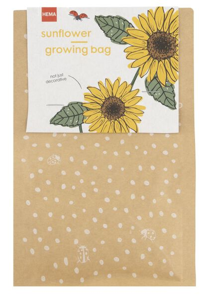 zonnebloemen kweekset - 41810275 - HEMA