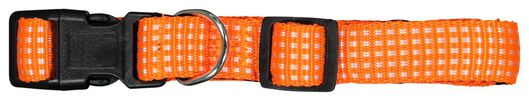 dog collar - 61122387 - hema