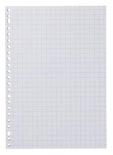 Image of HEMA 100-pack Ring Binder Paper 10 X 10 Cm Squared