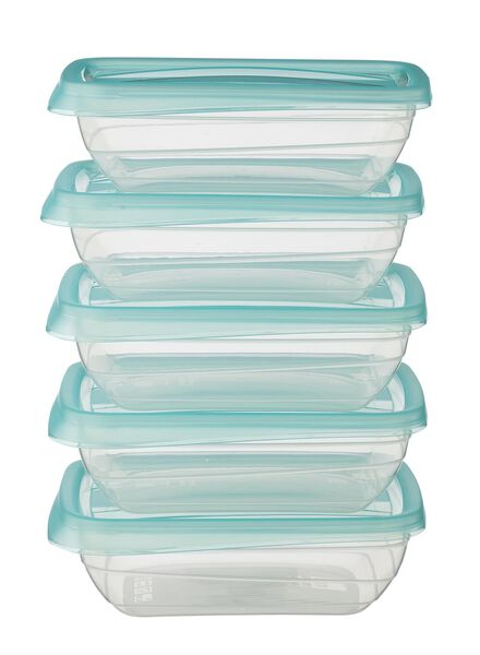 5-pack storage boxes 0,5 L - 80810120 - hema
