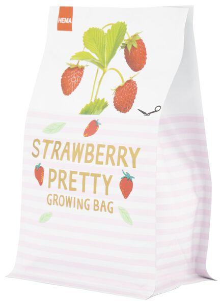 sac de culture fraises - S - 41810078 - HEMA
