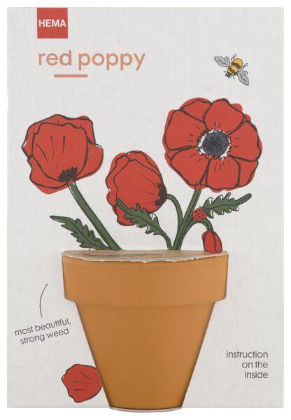 rote Mohnblumen im Topf, Ø 5.5 cm - 41810266 - HEMA