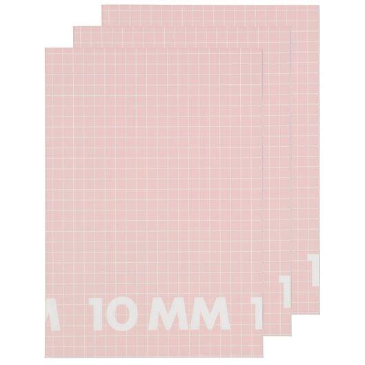 HEMA Schriften A4 - Geruit 10 Mm - 3 Stuks