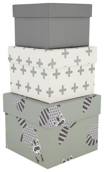 3 boîtes en carton - raton laveur - 13222079 - HEMA