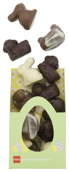 mélange de chocolats pralinés de Pâques 180g - 10081018 - HEMA