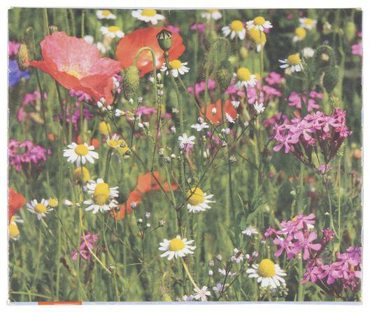 kit bombe de graines à fleurs sauvages - 41810225 - HEMA