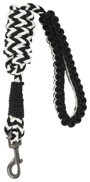 dog leash - 61122395 - hema