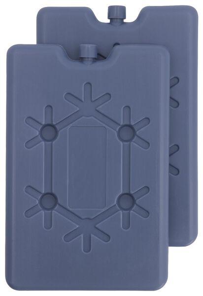 2 éléments de réfrigération 16x11x1.5 - 41820345 - HEMA