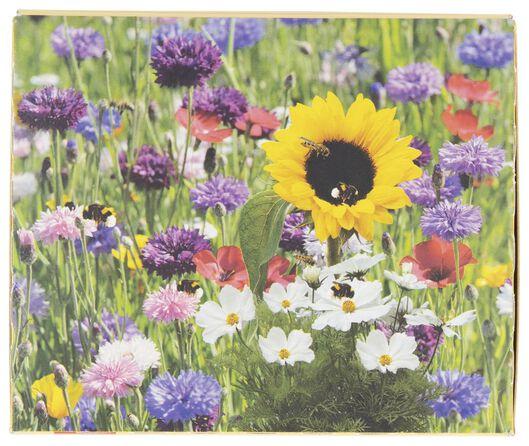 kit bombe de graines fleurs pour abeilles - 41810092 - HEMA