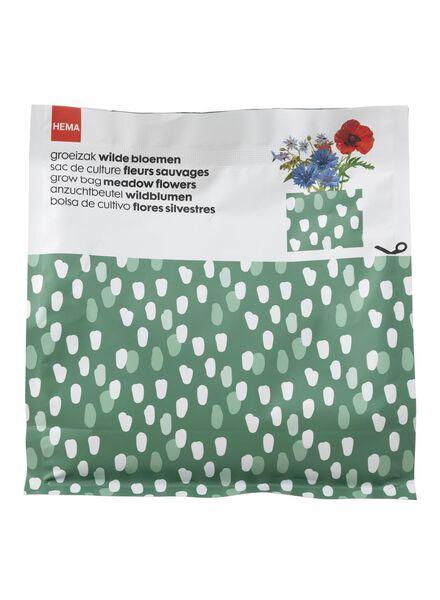Wildblumen-Anzuchtset - 41820067 - HEMA